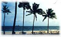 fort_lauderdale_beach3.jpg